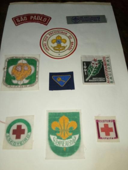 Insignias Scouts De Brasil