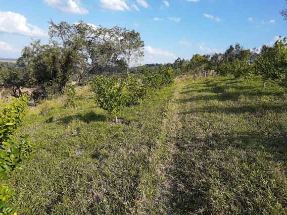 Terrenos A Venda Em Atibaia