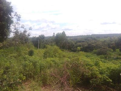 Chácara Para Comprar No Zona Rural Em São Gonçalo Do Pará/mg - 4431