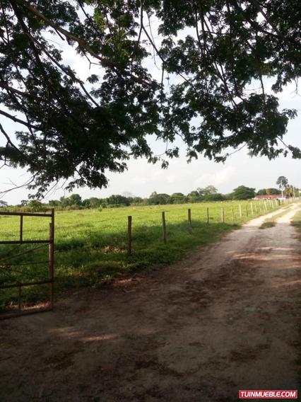 Venta Hacienda Fincas 63 Hes Caja Seca Rah 19-14319 C A