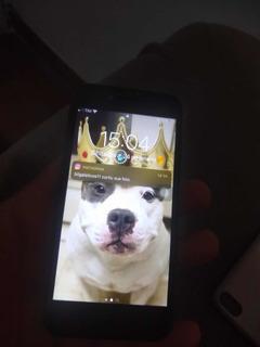 Celular iPhone 8 64 Gigas .
