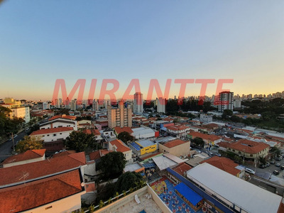 Apartamento Em Parada Inglesa - São Paulo, Sp - 322442