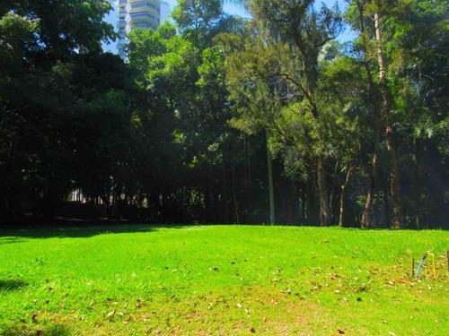 Imagem 1 de 28 de Terreno-são Paulo-alto Da Boa Vista | Ref.: Reo38411 - Reo38411