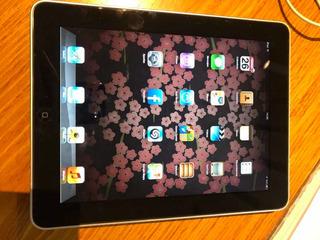 iPad 1ra Gen. 16gb Excelente Estado Con Funda Y Cargador