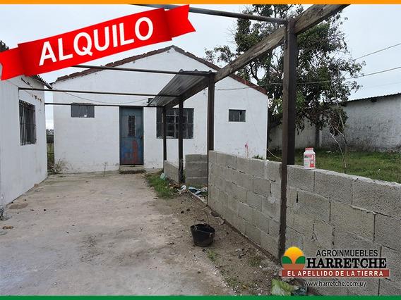 Alquilo Casa Con Galpones Y Chiqueros En Juanico Harretche