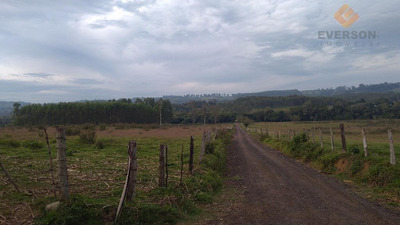 Sítio Rural À Venda, Ferraz, Rio Claro. - Codigo: Si0010 - Si0010