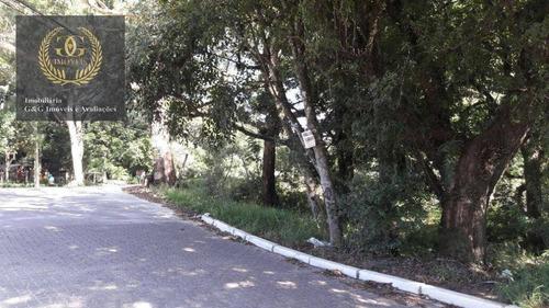 Imagem 1 de 3 de Terreno À Venda, 4000 M² Por R$ 1.590.000,00 - Tarumã - Viamão/rs - Te0052