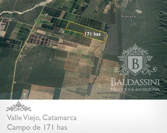 Excelente Campo De 171 Has En Valle Viejo