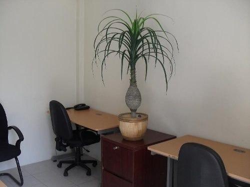 Imagen 1 de 8 de Oficina Amueblada En La Colonia Narvarte(t)