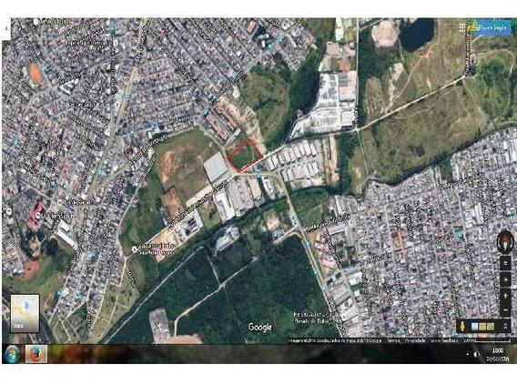 Venda Terreno Acima 5.000 M2 Jardim Presidente Dutra Guarulhos R$ 10.500.000,00 - 27674v