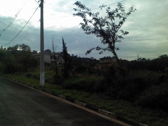 Terreno - Te00083 - 33738131