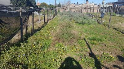 Venta Terreno Ex Vivero Zona De Plantaciones San Miguel Oest
