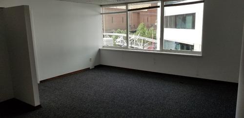 Alquiler - Oficina - Buceo Categoria Premium