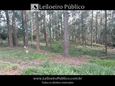 Modelo (sc): Terreno Rural Com 19.000;00 M² Crnbh