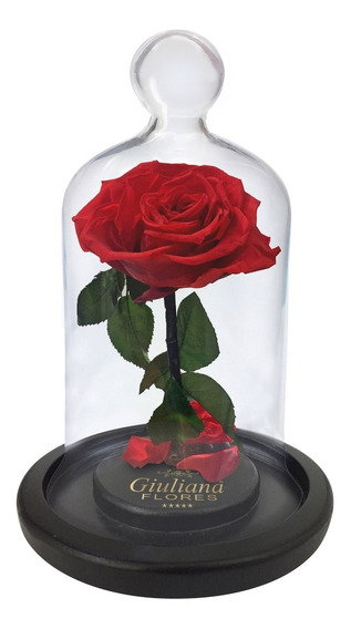Rosa Encantada Vermelha Giuliana Flores