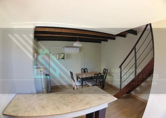Apartamento 1 Dormitorio Equipado Con Galpon Opcional
