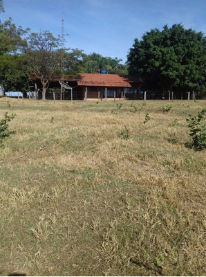 Fazenda A Venda Em Figueirão - Ms (dupla Aptidão) - 1118