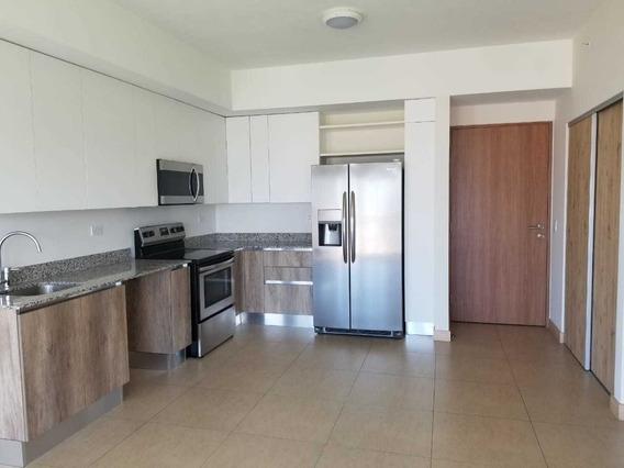Apartamento En Alquiler En Santa Verde San Francisco Heredia