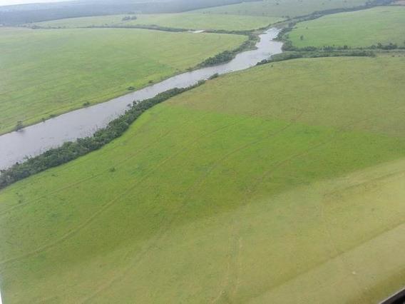 Fazenda Para Venda Em Nova Alvorada Do Sul, Centro - 855