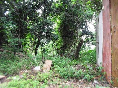 Chácara Das Candeias- Declive Com Linda Vista Para Área Verde! - Codigo: Te0573 - Te0573