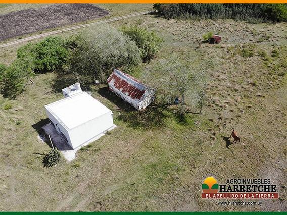Vendo En Santa Rosa Chacra De 5 Has Con Casa Y Galpón S/ruta