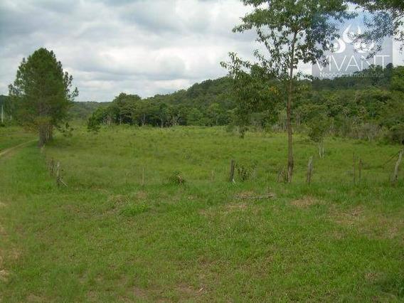 Terreno Comercial À Venda, Parque Santa Rosa, Suzano - Te0003. - Te0003