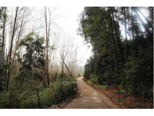 (tde) Camino A Nonguen - Km 1 - 300