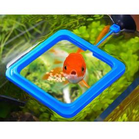 Comedouro Quadrado Para Alimentação Peixe Aquário Tanque