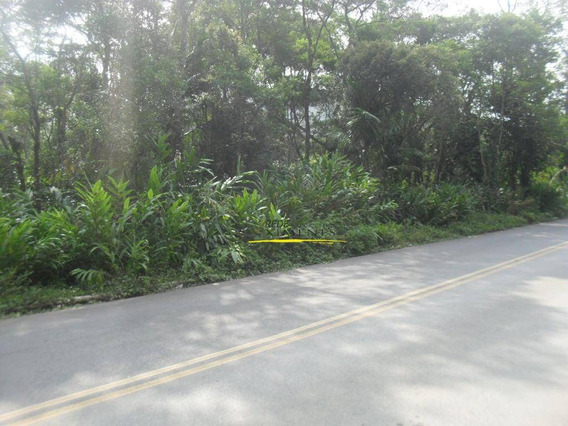 Terreno À Venda, 10360 M² Por R$ 350.000 - Parque Rio Grande - Rio Grande Da Serra/sp - Te0118