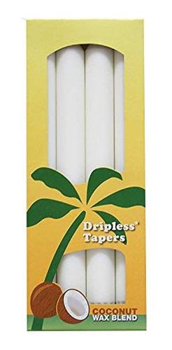 Imagen 1 de 1 de Aloha Bay Palm Se Estrecha El Recuento De 4 Blancos
