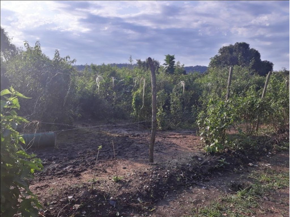 Terreno Em Ubatiba, Maricá/rj De 0m² À Venda Por R$ 100.000,00 - Te287146