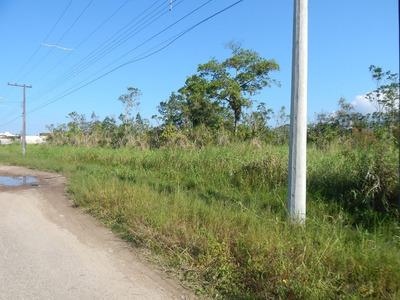 Terrenos No Bairro Nova Peruíbe Para Venda