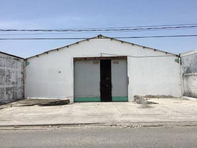 Bodega Industrial En Renta Pedro Ignacio Mata