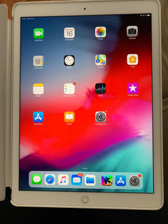 iPad Pro 12.9 Pulgadas Seg. Generacion 2019. 64 Gb Blanca