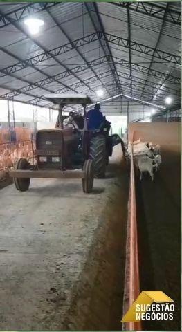 Sul De Minas Fazendinha Com Agroindústria E Capril - 2812