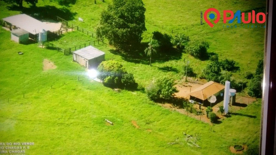 Chacara / Sitios / Fazenda - Rio Verde - Ref: 15914 - V-15914