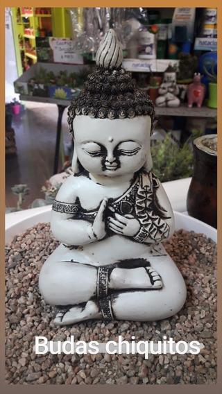 Buda Mini Palma En El Pecho