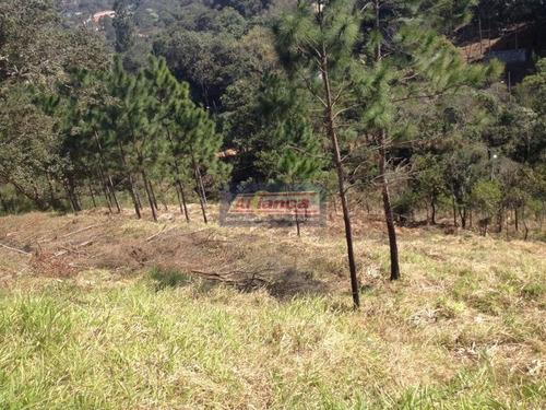 Terreno À Venda, 1000 M² Por R$ 128.000 - Água Azul - Guarulhos/sp - Ai189