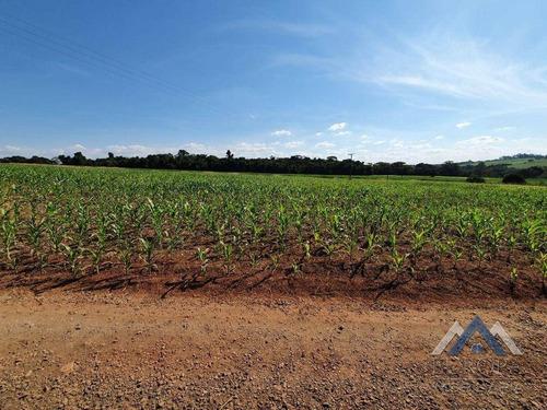 Imagem 1 de 4 de Chácara À Venda, 3300 M² Por R$ 260.000,00 - Recanto Do Salto - Londrina/pr - Ch0200