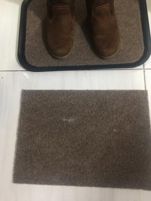 Bandeja Con Tapete Desinfectante Para Calzado