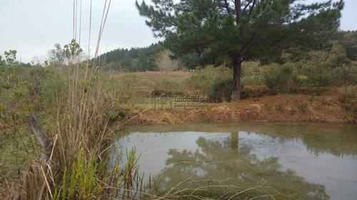 Terreno À Venda Com 135228m² Por R$ 600.000,00 No Bairro Zona Rural - Tijucas Do Sul / Pr - 91b