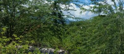 Land For Sale In Azua, Dominican Republic