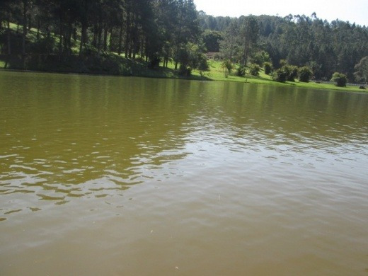 Venda Sitio Paradisiaco Maravil Juquitiba Brasil - 422