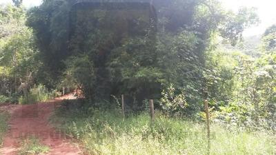 Rural Para Venda, 0 Dormitórios, São Cândido - Caratinga - 360