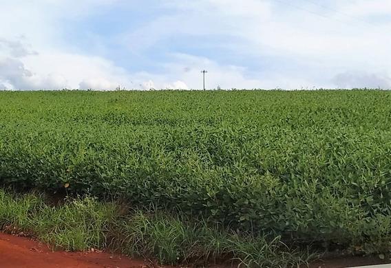 Fazenda A Venda No Bairro Centro Em Abatiá - Pr. - 343-1