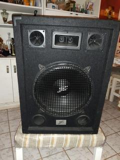 Bafle Dj-15z Zebra 300 Watts 15 Pulgadas
