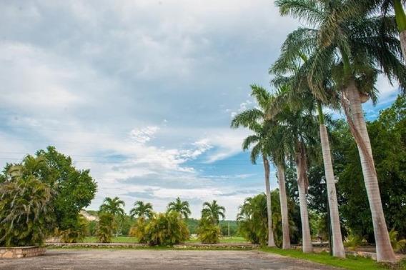 Casco De Hacienda San Pedro Tenabo