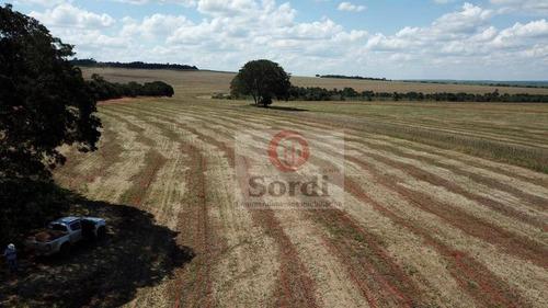 Imagem 1 de 20 de Fazenda À Venda, 4400000 M² Por R$ 22.000.000,00 - Zona Rural - Prata/mg - Fa0109