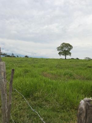 Venta Finca Chaparral Tolima