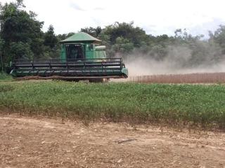 Fazenda À Venda, 1.003 Hectares Por R$ 28.000.000 - Zona Rural - Lucas Do Rio Verde/mt - Fa0232